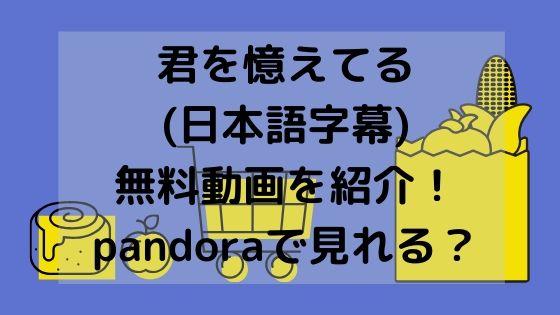 君を憶えてる(日本語字幕)無料動画を紹介!pandoraで見れる?