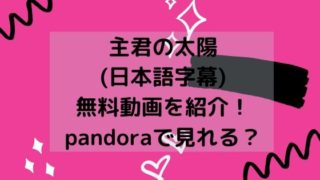 主君の太陽(日本語字幕)無料動画を紹介!pandoraで見れる?