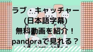 ラブ・キャッチャー (日本語字幕) 無料動画を紹介! pandoraで見れる?